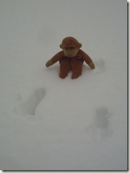 monkey business 005