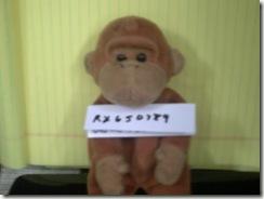 monkey business 007