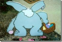 bunny_behind_800x535