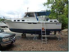 boatpaint 2015-04-29 003