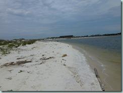 pelican island 2015-05-22 022